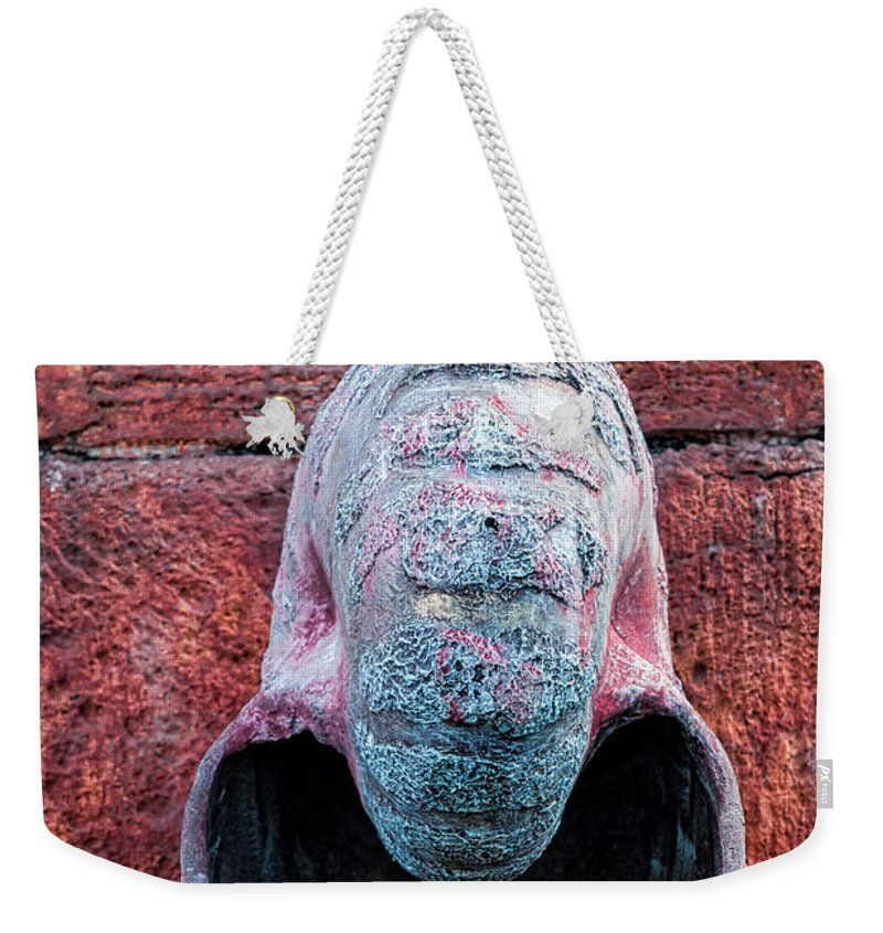 Seagull Weekender Tote Bag featuring the photograph Upon A Shell by Christopher Holmes