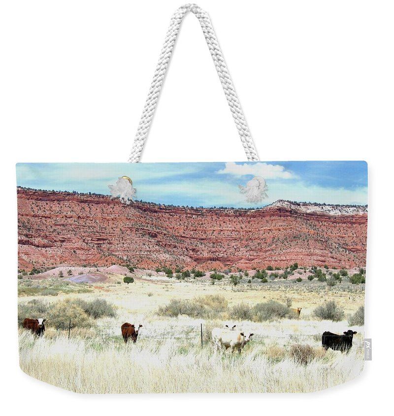 Utah Weekender Tote Bag featuring the photograph Utah 7 by Will Borden