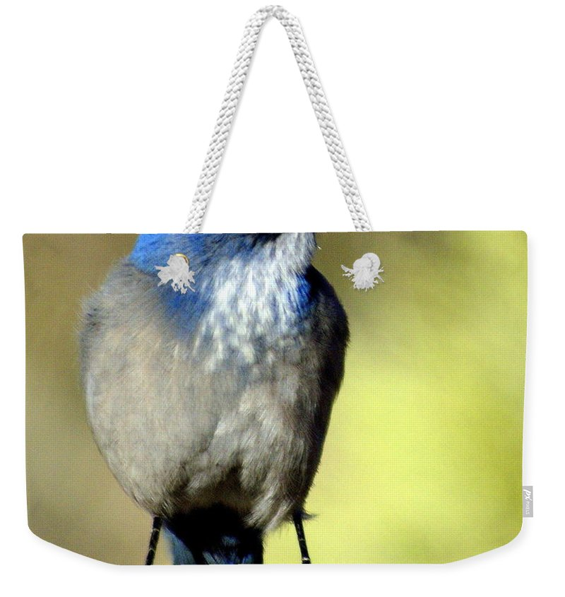 Birds Weekender Tote Bag featuring the photograph Utah Bird by Marty Koch