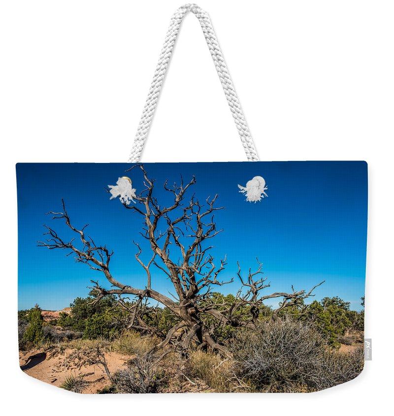 Utah Juniper Weekender Tote Bag featuring the photograph Utah Juniper by Paul Freidlund