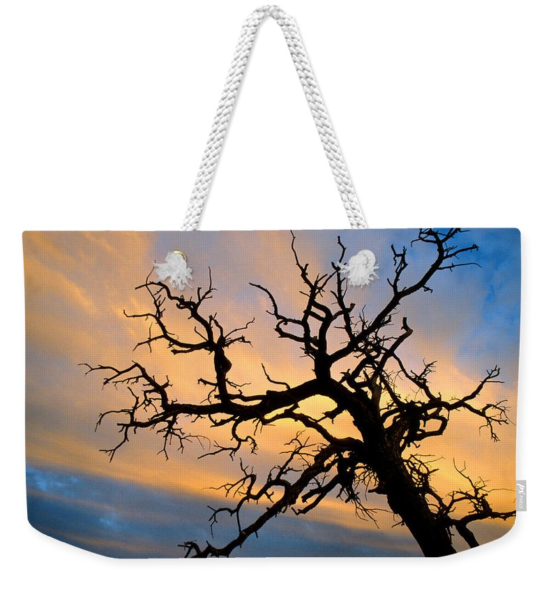 Tree Weekender Tote Bag featuring the photograph Utah Sunset by Jerry McElroy