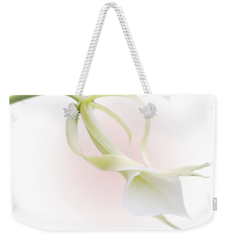 Love Weekender Tote Bag featuring the photograph Valentine Orchid by Marilyn Hunt