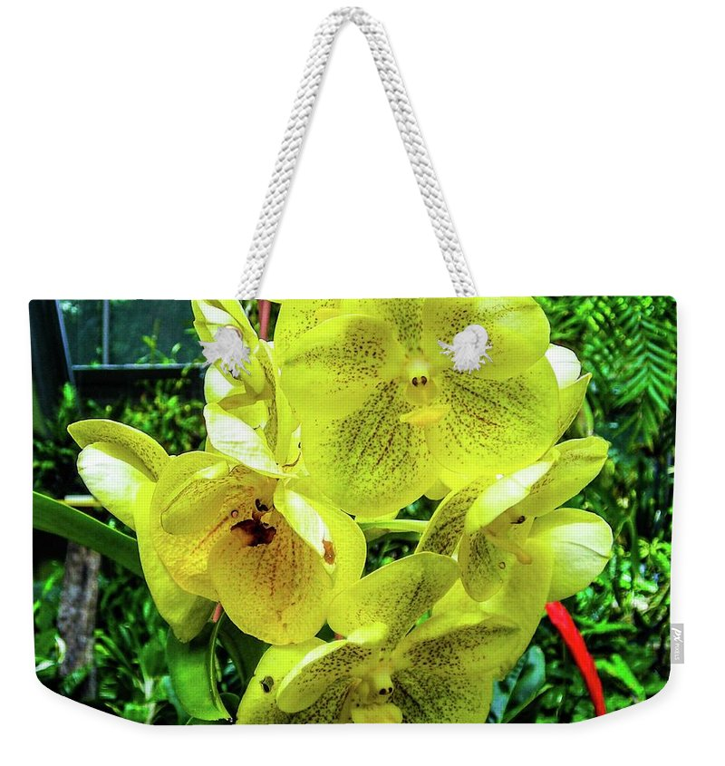 Vanda Weekender Tote Bag featuring the photograph Vanda Orchid by Louie Navoni