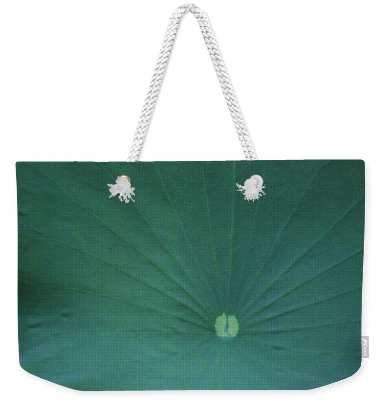Weekender Tote Bag featuring the photograph Vanity by Heather Kirk