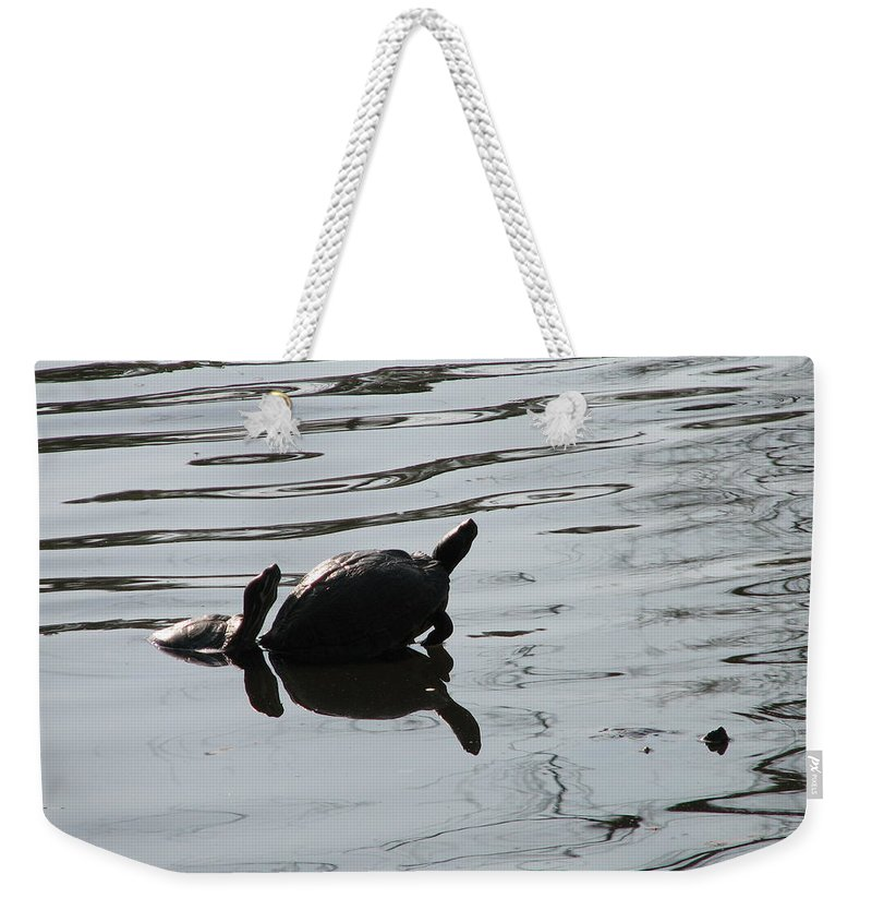 Turtle Weekender Tote Bag featuring the photograph Vereen Turtles by Kelly Mezzapelle