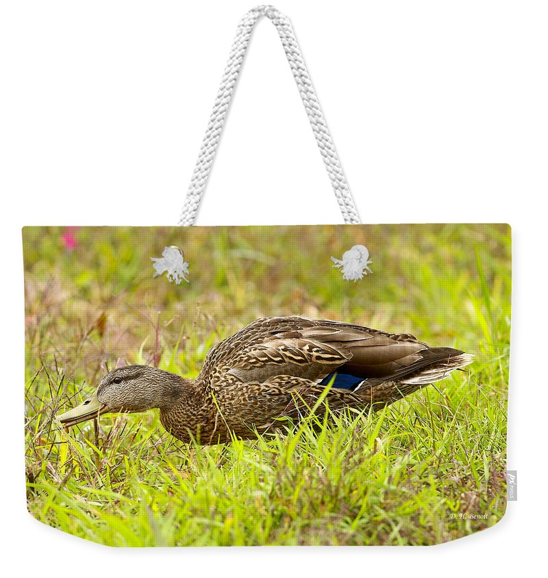 Duck Weekender Tote Bag featuring the photograph Vermont Mallard Portrait by Deborah Benoit