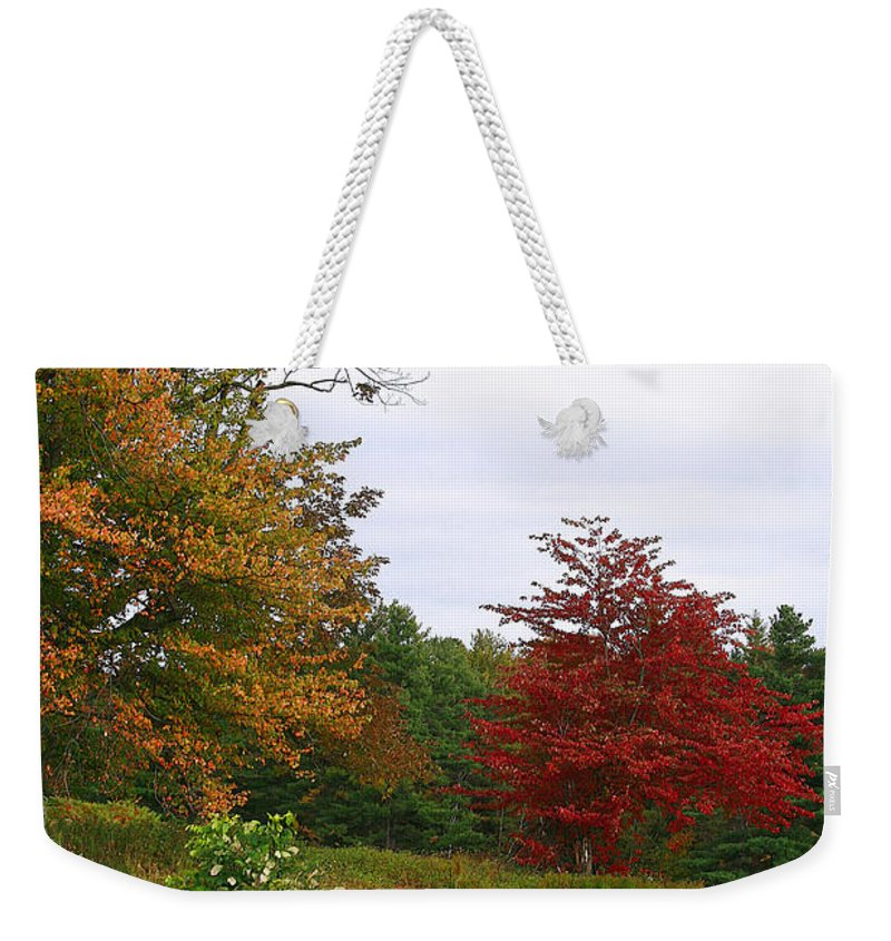 Fall Weekender Tote Bag featuring the photograph Vermont Roadside Color by Deborah Benoit