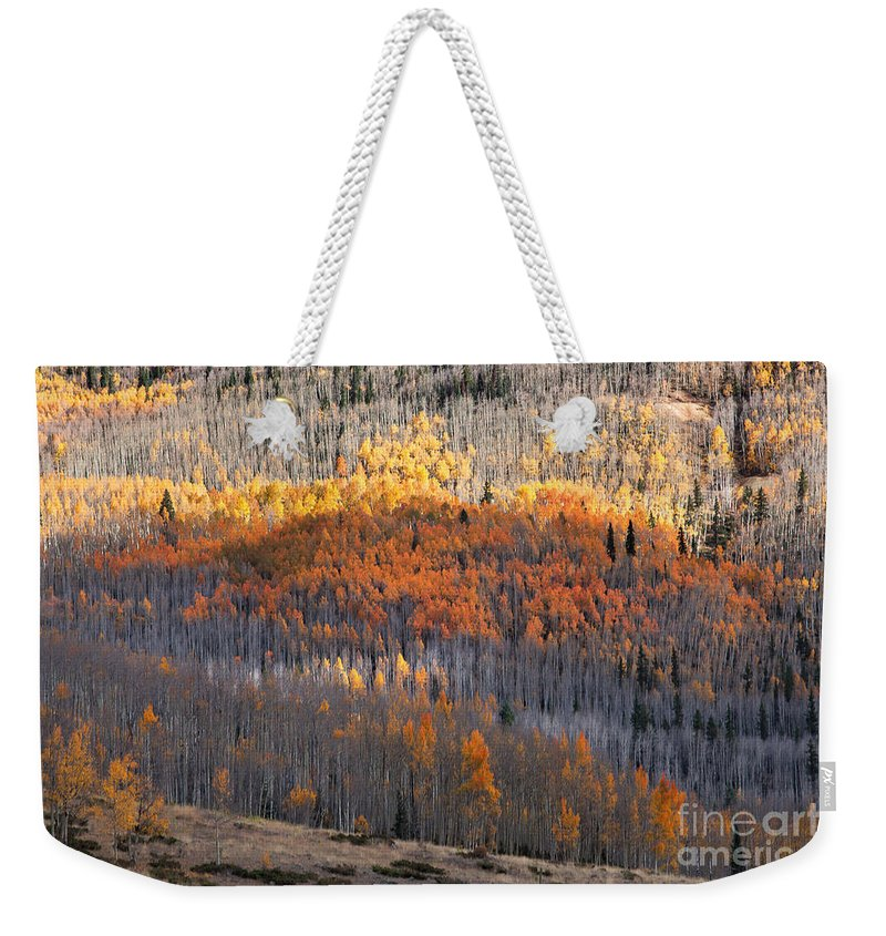 Autumn Colors Weekender Tote Bag featuring the photograph Vertical Gain by Jim Garrison
