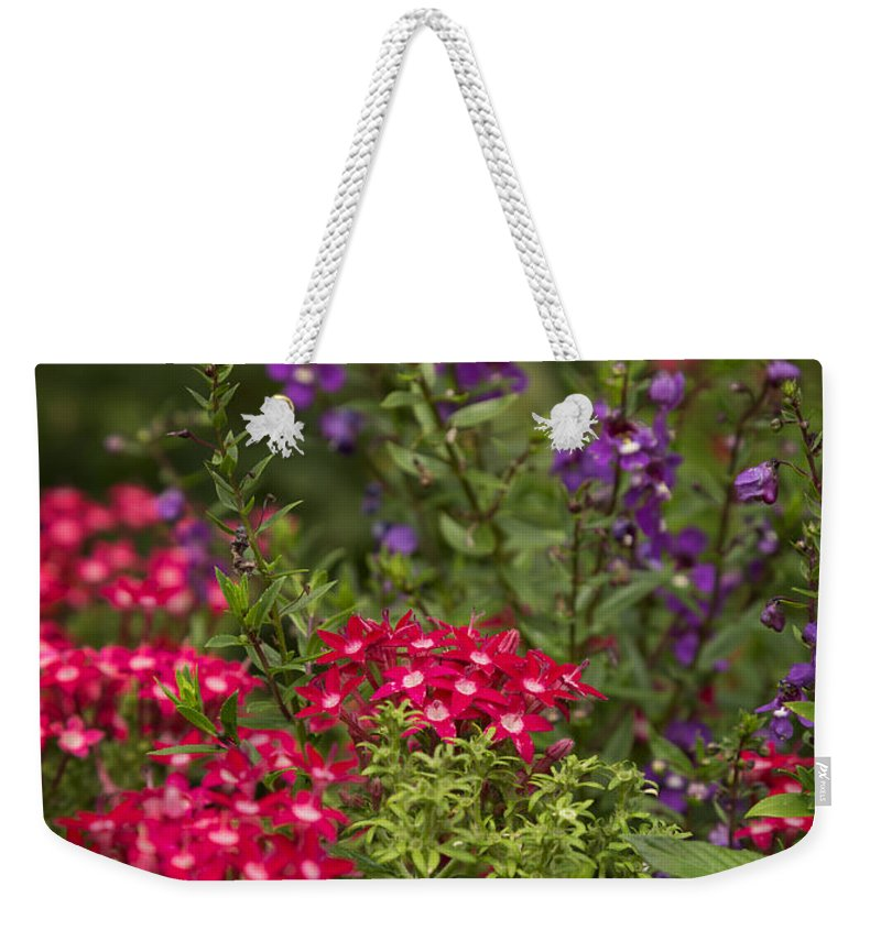 Flower Weekender Tote Bag featuring the photograph Vibrant Blooms by Ricky Barnard