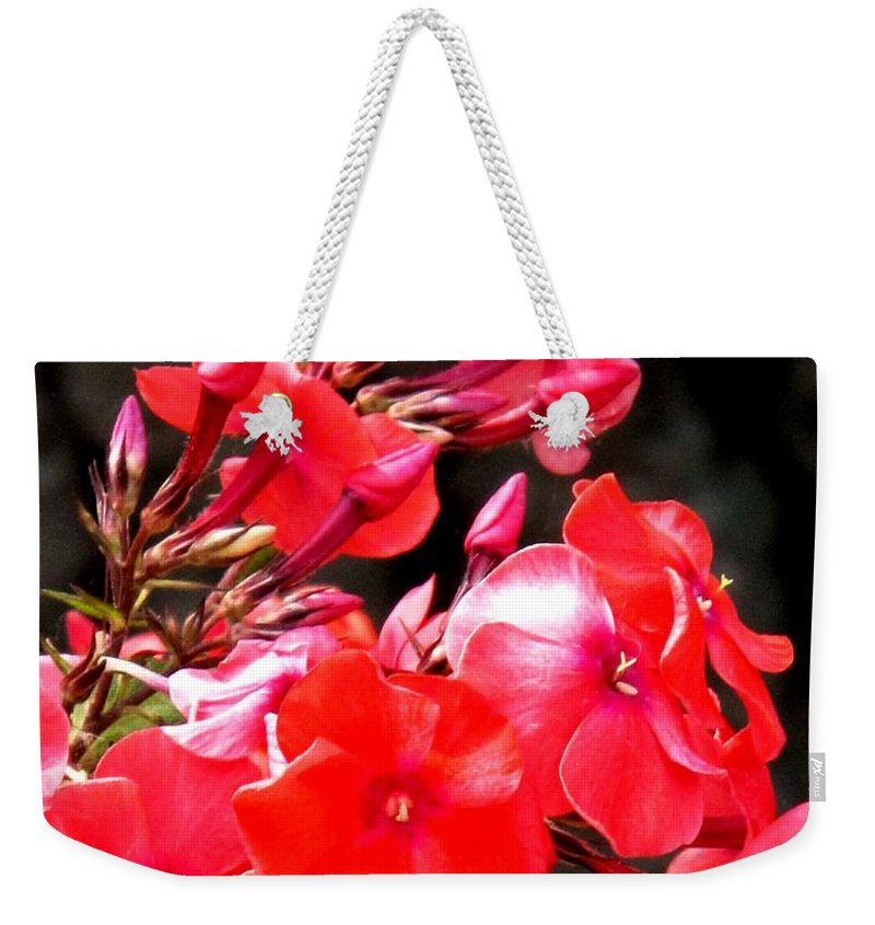Red Weekender Tote Bag featuring the photograph Vibrant by Ian MacDonald