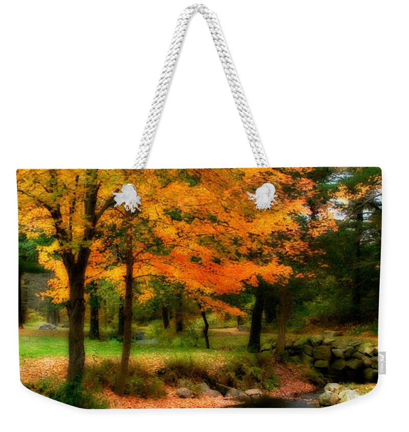 Fall Weekender Tote Bag featuring the photograph Vibrant October by Renee Hong