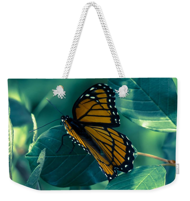 Butterfly Weekender Tote Bag featuring the photograph Viceroy by Kristin Hunt