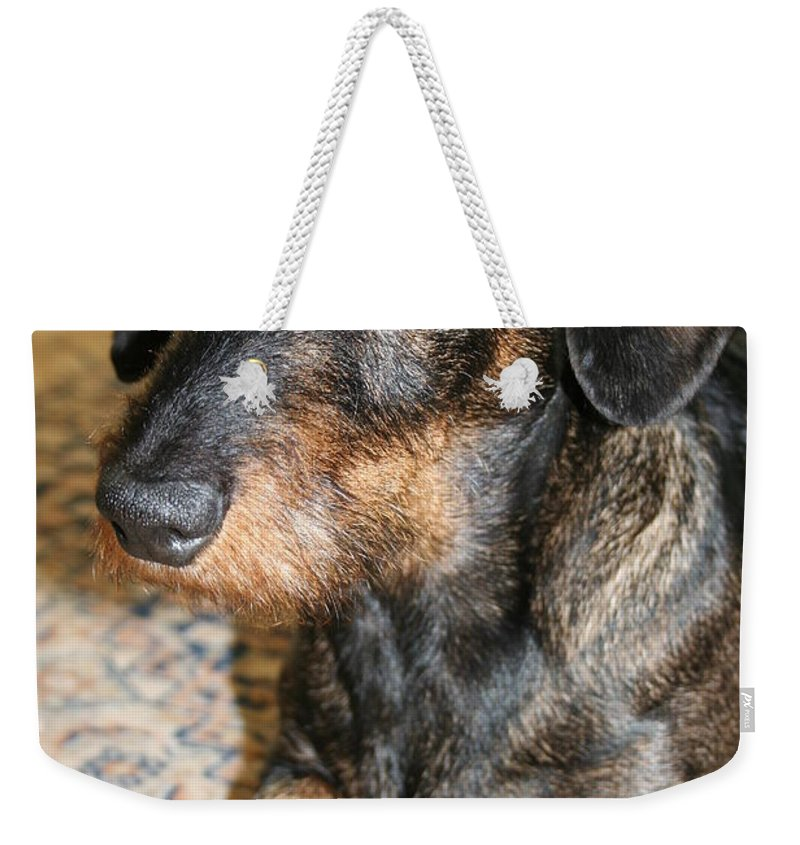 Dog Weekender Tote Bag featuring the photograph Victor by Christiane Schulze Art And Photography