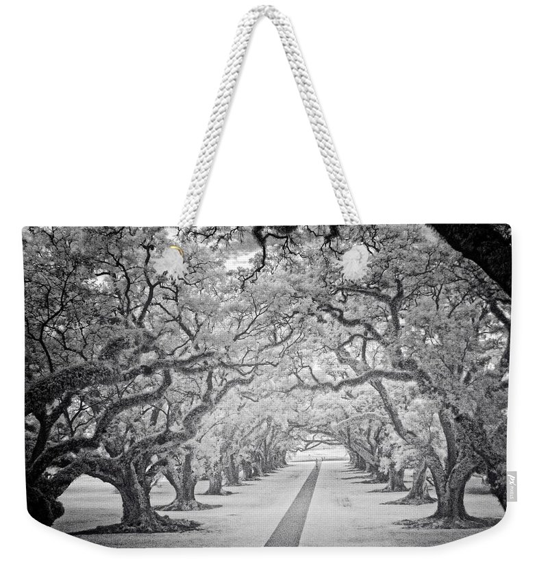 View From The Oak Alley Plantation Balcony Overlooking The Row Of Oak Trees. Photograph Taken With An Infrared Camera. Weekender Tote Bag featuring the photograph View Down Oak Alley by Fred Hahn