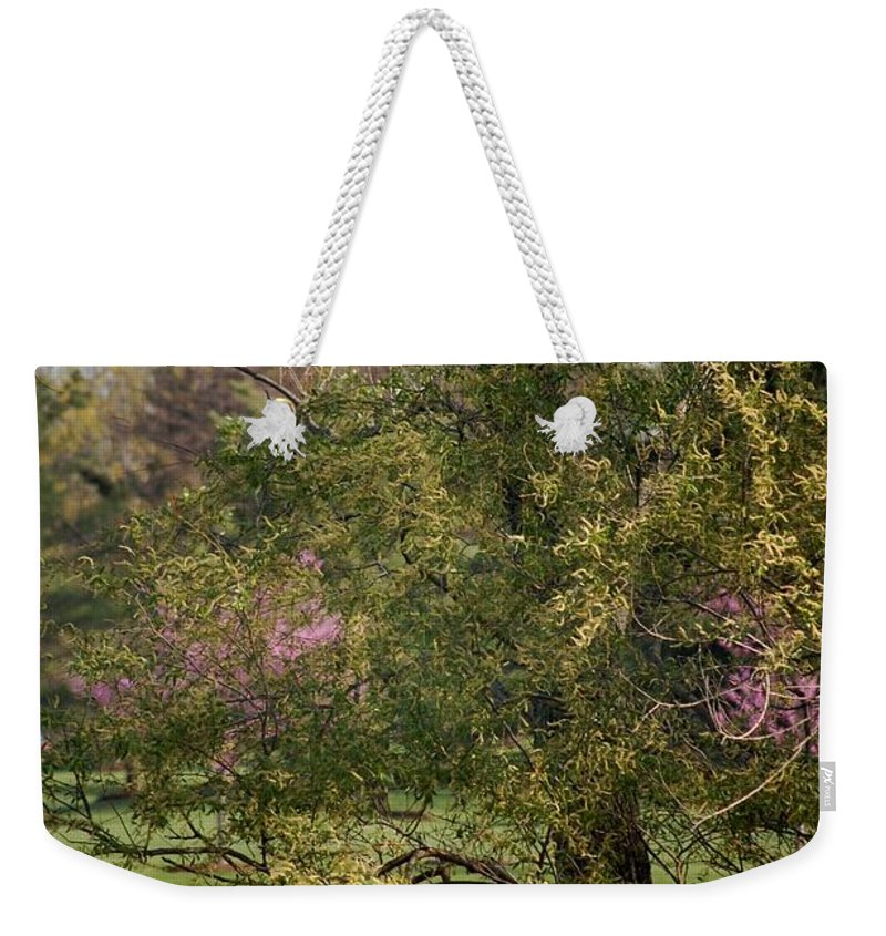 Landscape Weekender Tote Bag featuring the photograph View Out My Office Window. by David Lane