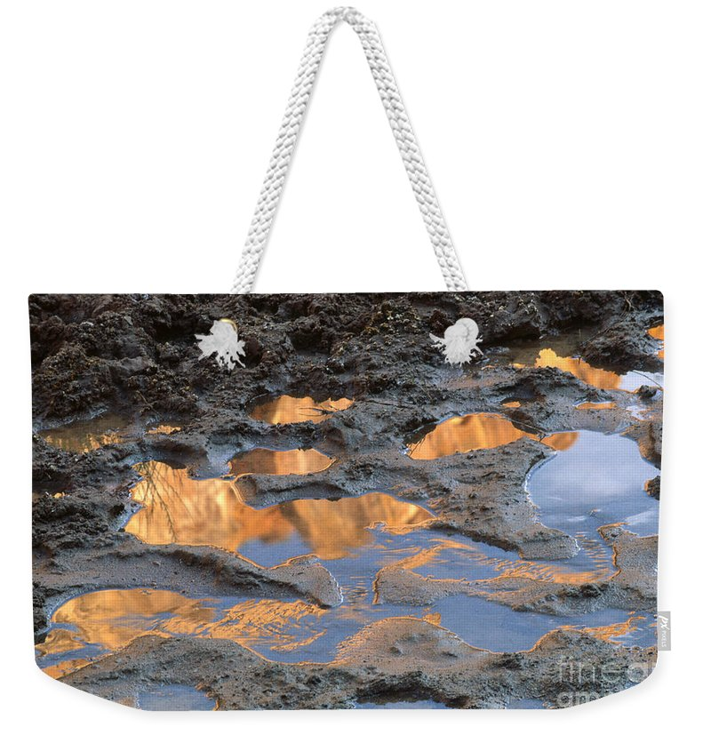 Southwest Weekender Tote Bag featuring the photograph View To The Sky by Sandra Bronstein