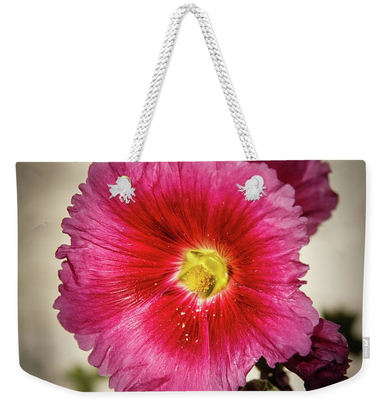 Alcea Rosea Weekender Tote Bag featuring the photograph Vignetted Hollyhock by Robert Bales
