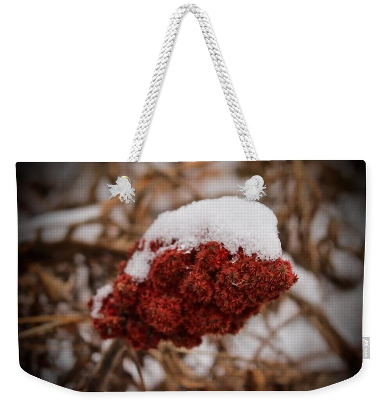 Snow Weekender Tote Bag featuring the photograph Vignettes - First Snow 1 by Mario MJ Perron
