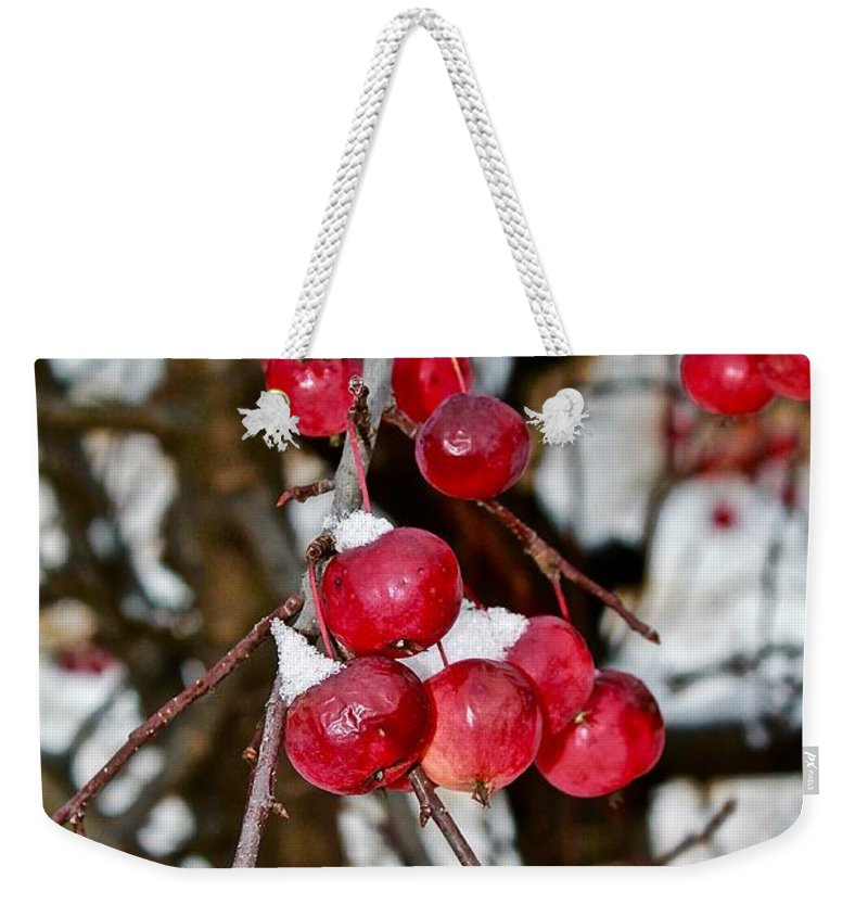 Fruit Weekender Tote Bag featuring the photograph Vignettes - Snow Fruit by Mario MJ Perron