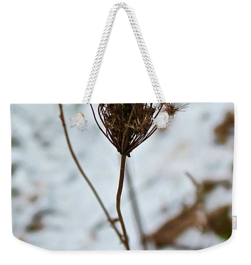 Plant Weekender Tote Bag featuring the photograph Vignettes - Snow Thistle by Mario MJ Perron