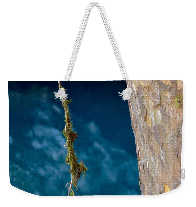 Vine Weekender Tote Bag featuring the photograph Vine by Photos By Zulma