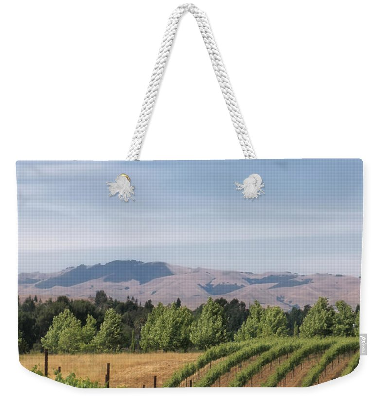 Landscapes Weekender Tote Bag featuring the photograph Vineyard by Karen W Meyer