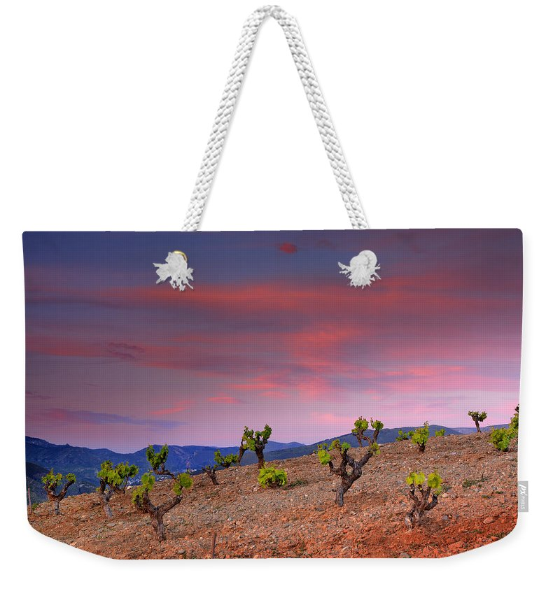 Sunset Weekender Tote Bag featuring the photograph Vineyards At Sunset In Spain by Guido Montanes Castillo