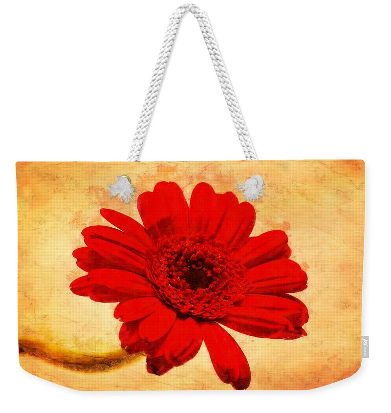 Vintage Weekender Tote Bag featuring the photograph Vintage Gerbera Daisy by Scott Carruthers