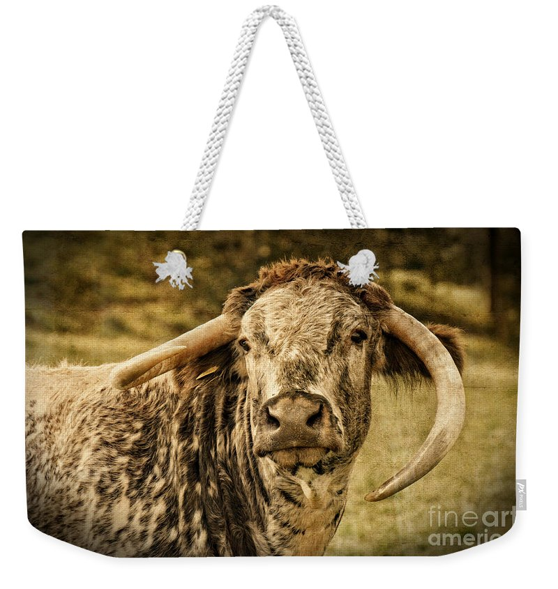 Beef Cattle Weekender Tote Bag featuring the photograph Vintage Longhorn Cattle by Mickey At Rawshutterbug