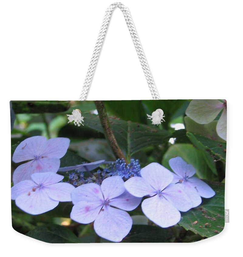 Violets Weekender Tote Bag featuring the photograph Violets O The Green by Kelly Mezzapelle
