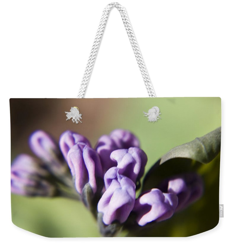 Virginia Weekender Tote Bag featuring the photograph Virginia Bluebell Buds by Teresa Mucha