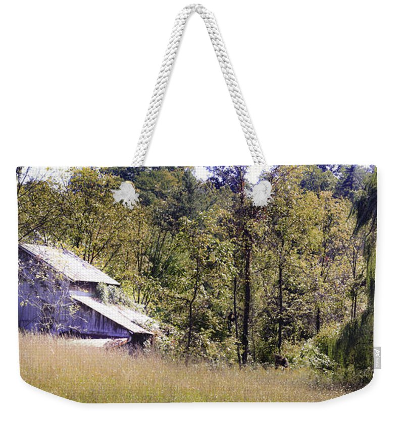 Virginia Weekender Tote Bag featuring the photograph Virginia Willow by Teresa Mucha