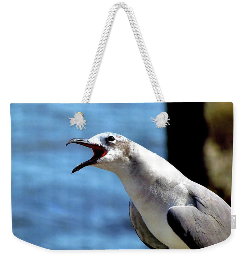 Animal Weekender Tote Bag featuring the photograph Vocal Sea Gull by John Trommer