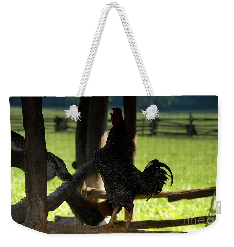 Farm Weekender Tote Bag featuring the photograph Voice Of The Farm by David Lee Thompson
