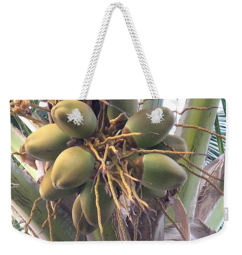 Palm Weekender Tote Bag featuring the photograph Voluptuous by Ian MacDonald