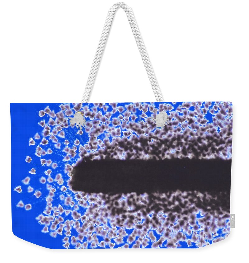 Willow Root Weekender Tote Bag featuring the photograph Vorticella On Willow Root, Rheinberg by M. I. Walker