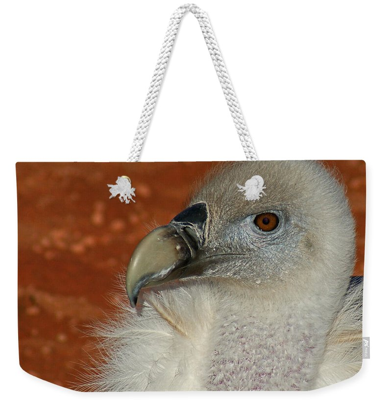 Vultures Weekender Tote Bag featuring the photograph Vulture Portrait by Ernie Echols