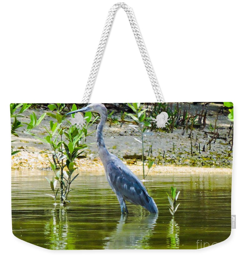 Blue Heron Weekender Tote Bag featuring the photograph Wading Blue Heron by Marilee Noland