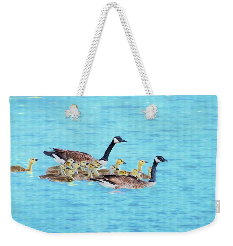 Canadian Geese Weekender Tote Bag featuring the photograph Wait For Me by Susan Rissi Tregoning