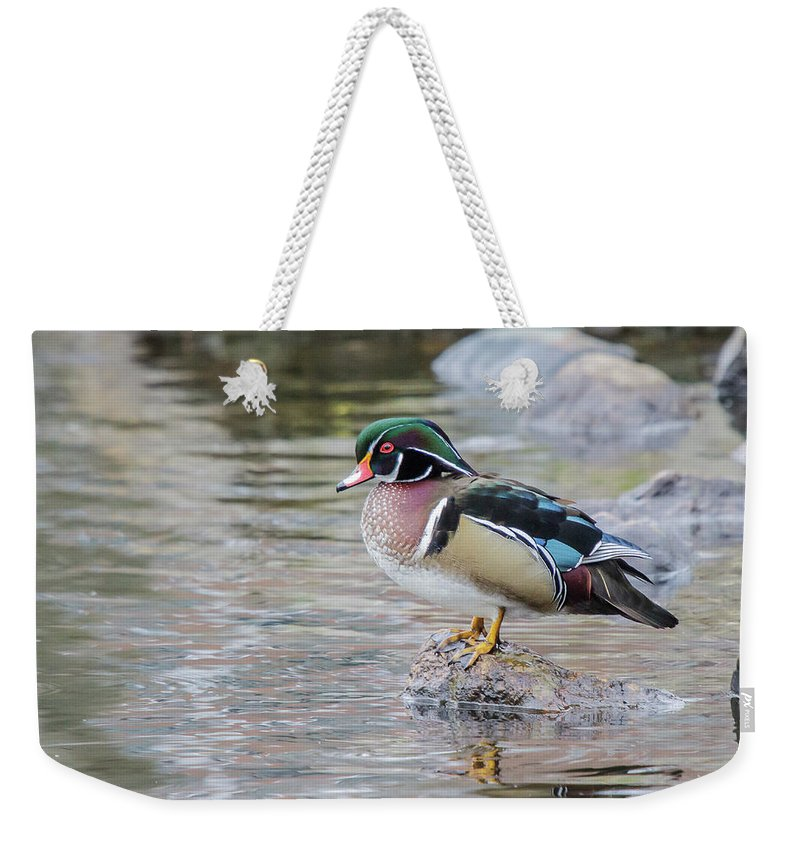 Wildlife Weekender Tote Bag featuring the photograph Waiting by Barbara Blanchard