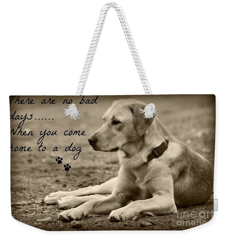 Dog Weekender Tote Bag featuring the photograph Waiting by Clare Bevan
