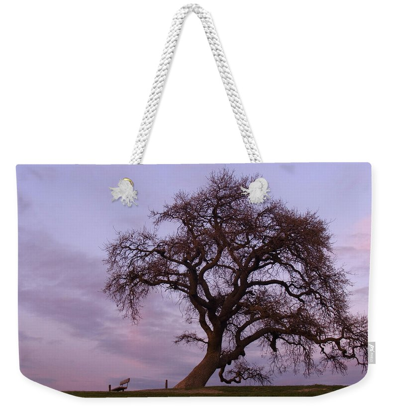 Livermore Weekender Tote Bag featuring the photograph Waiting For Paul by Karen W Meyer