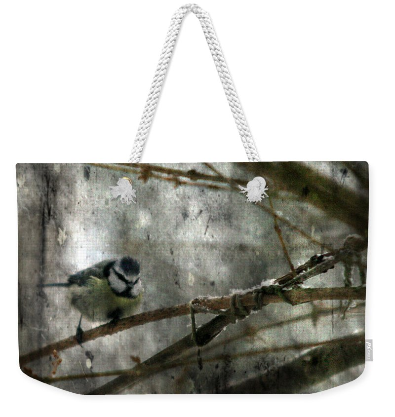 Blue Tit Weekender Tote Bag featuring the photograph Waiting For Springtime by Angel Tarantella