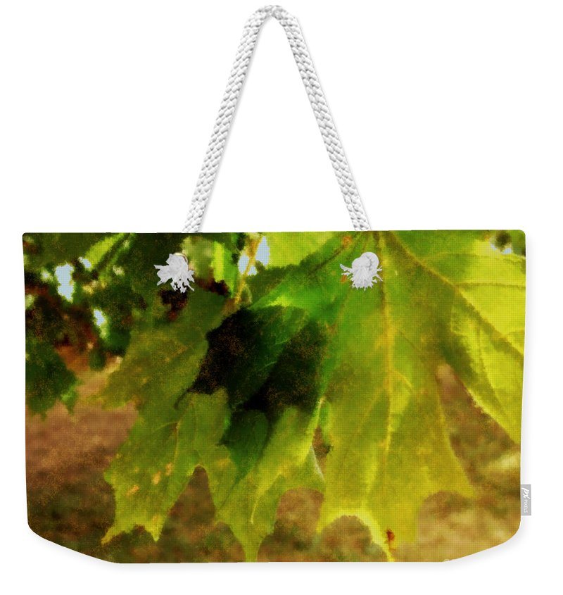 Autumn Weekender Tote Bag featuring the painting Waiting For Winter by RC DeWinter