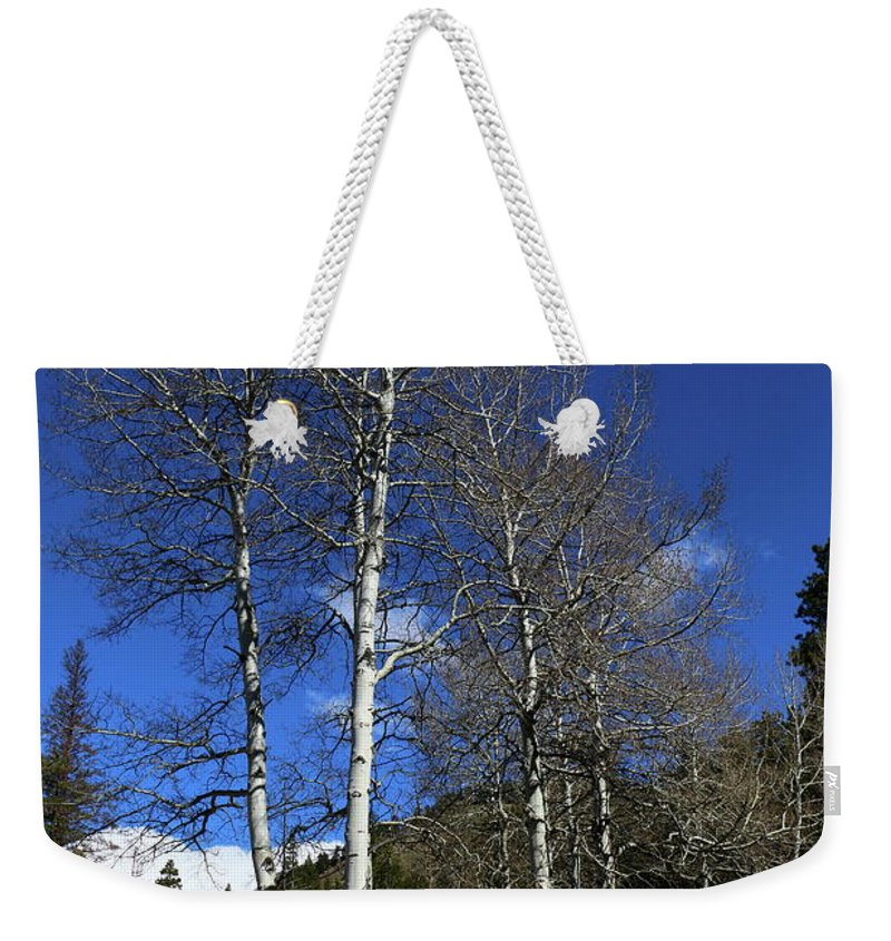 Park Weekender Tote Bag featuring the photograph Waiting For You by Christiane Schulze Art And Photography