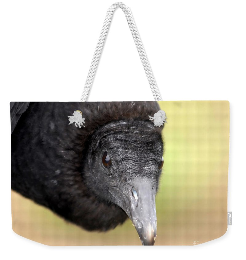 Black Vulture Weekender Tote Bag featuring the photograph Waiting For You by David Lee Thompson