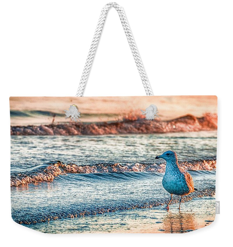 Ocean Weekender Tote Bag featuring the photograph Walking On Sunshine by Mathias Janke