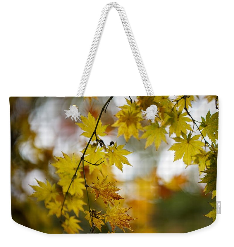 Fall Colors Weekender Tote Bag featuring the photograph Walks In The Autumn Garden by Mike Reid