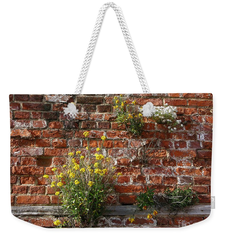 Wallflowers Weekender Tote Bag featuring the photograph Wall Flowers by Ann Horn