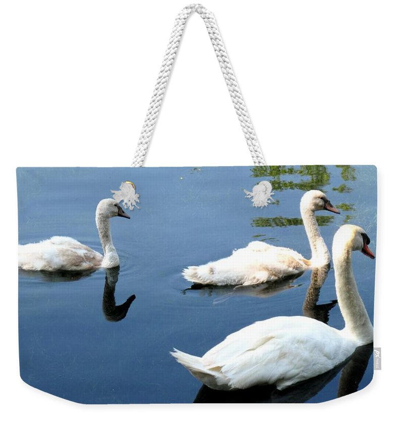 Swans Weekender Tote Bag featuring the photograph Ward by Ian MacDonald